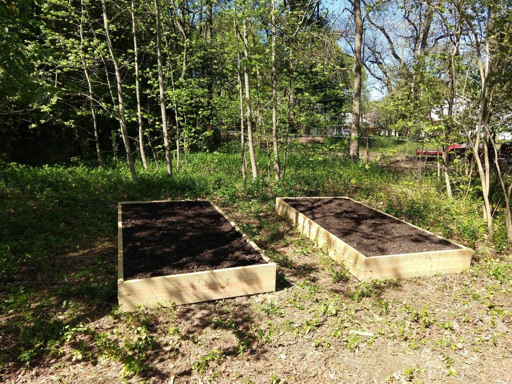 Two backyard raised veggie beds
